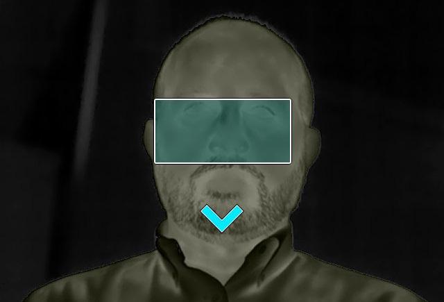 Měření teploty lidského těla pomocí termokamer Flir FXX-EST. flir_e54-e86-automaticky_rezim_-_blue_panther.jpg